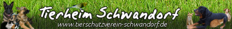 Banner Tierheim Schwandorf