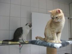 Joel und Luca